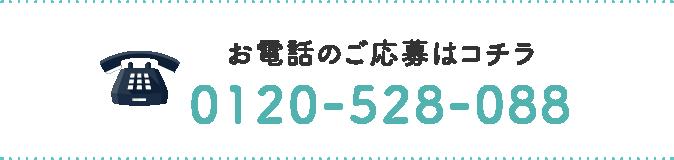 0120-528-088